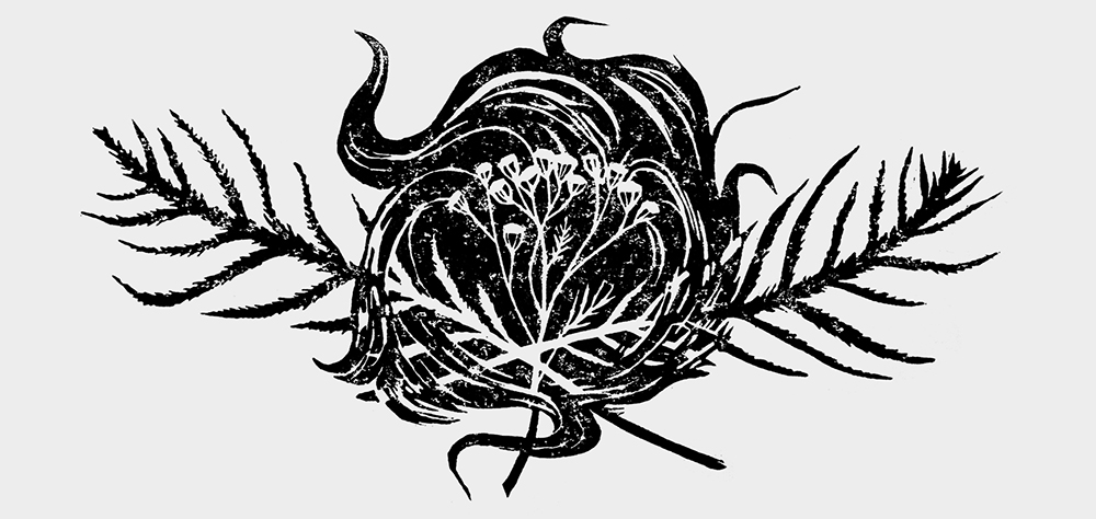 tansy lino cut motive. herbal magick
