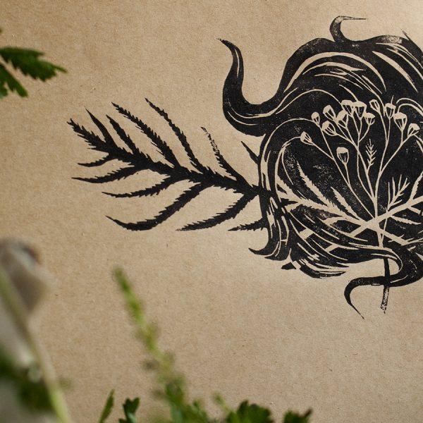 tansy the herb of preservation. rainfarn das kraut der erhaltung